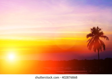 Soft focus image field during sunrise. Abstract blur colorful background of blurred colorful rays light sky clouds with silhouette coconut tree vacation summer. Purple Nature wallpaper of sunset.