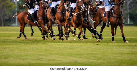 Soft focus motion of Polo player during Polo match.