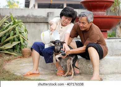 soft focus of The old Man and Woman is bathing dog. Thailand Bangkaew dog breed.
