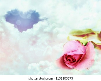 Soft focus of pink rose and blurred background of blue heart shape in many white clouds with lighting decorations on love concept, double exposure