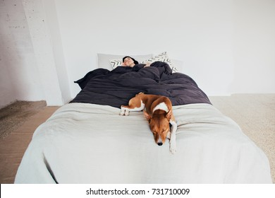 Soft focus shot focused on cute puppy dog sleeping on edge of bed, protecting peace of owner who is resting in bed, concept pet, friendship and relax