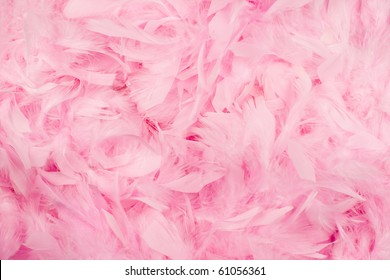 Soft and gentle theme - pink feathers background.