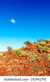Soft green bushes on an orange hillside in Australian outback with a moon in blue sky