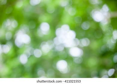 Soft green natural bokeh background