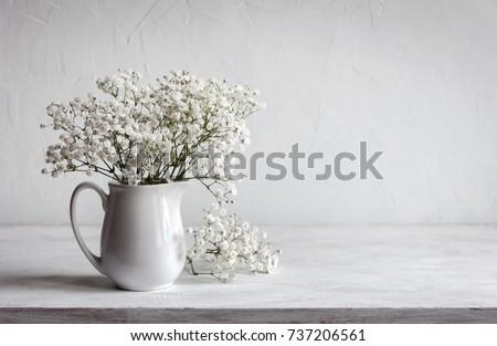 Soft Home Decor White Jug Vase Stock Photo Edit Now 737206561