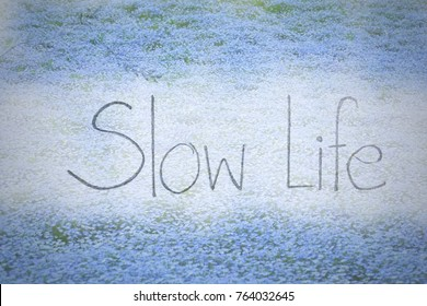 """Soft image - Hand writing """"Slow Life"""" on beautiful field of Nemophila background. Time to rest. Charge energy in your life."""