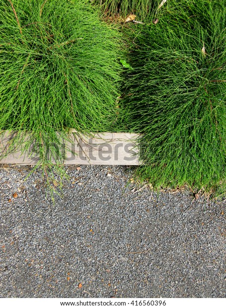 Soft Landscaping Hard Landscaping Timber Edging Stock Photo (Edit