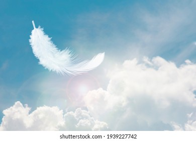 Soft and Light Fluffy White Feather Floating in The Sky with Clouds. Abstract Feather Heavenly Dreamy Fluffy Colorful Sky.