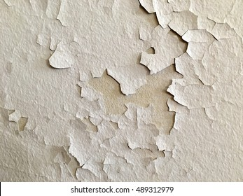 Soft low-key natural light emphasizes the texture of old, cracked paint on a white wall.