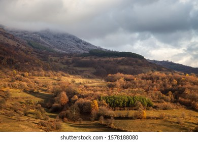 Soft, misty, moody view of a rocky mountain summit covered by thick mist and frost and foreground autumn colored trees lighten by soft sunlight