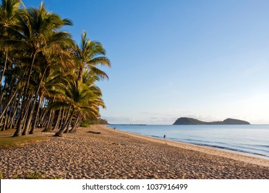 The soft morning light casts a warm glow over the palm fringed beach at Palm Cove near Cairns in Far North Queensland, Australia.