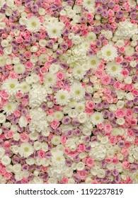 Soft Pastel Flower Wall Floral Background Roses Wallpaper, Wedding Flowers, Wedding Decor