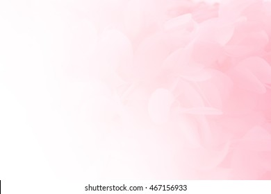Soft pink pastels background, wedding, anniversary, valentines theme and concept - Shutterstock ID 467156933