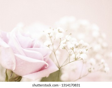 A soft pink rose with white baby's breath in the background layered with a textured glass for sparkle.