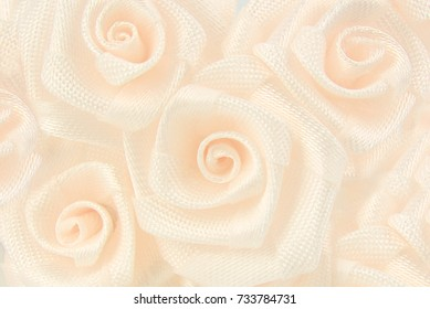 soft roses flower background