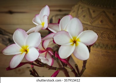 (Soft sepia and antique colour tone) Sweet pink yellow flower plumeria or frangipani bunch with old vintage baked clay vase and wood background
