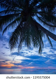 A soft sunset with blues and purples against silhouetted palm trees on a calm ocean in east Thailand