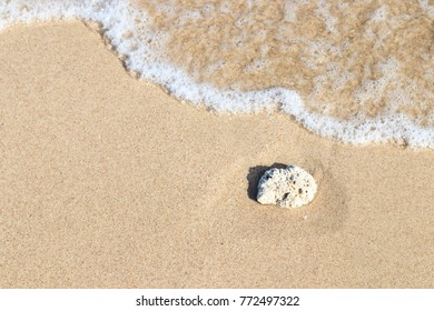Soft Wave On Sandy Beach with white coral. Background. Selective focus. abstract sand on the beach and soft wave background