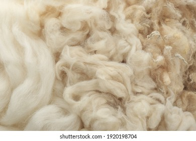 Soft white wool texture as background, closeup