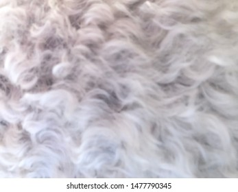 Soft woolly fur in white