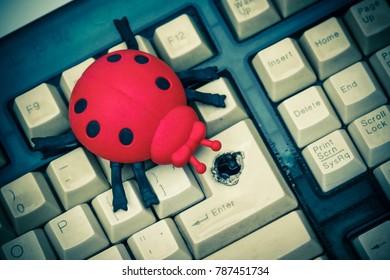 Software bug / A ladybug on computer keyboard (selective focus)