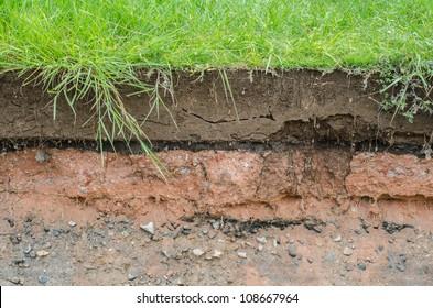 Soil beneath the asphalt