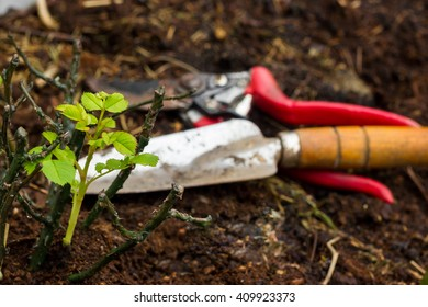 soil, to care for plants, gardening tools work on the farm,