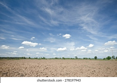 soil and clouds,rice farm