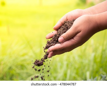 Soil Compost, Farmer hands holding and pouring organic fertilizer on green background