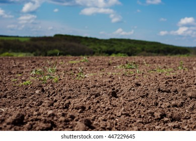 Soil, cultivated dirt, earth, ground, brown land background. Organic gardening, agriculture. Nature closeup. Environmental texture, pattern. Mud on field.