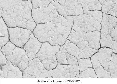 Soil drought cracks texture white background for design.