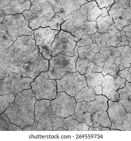 Soil dry and cracked texture
