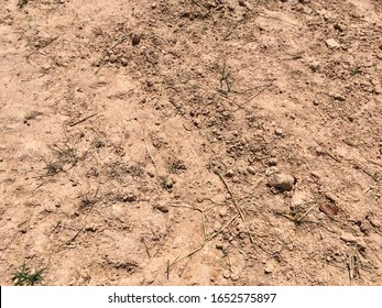 Soil or earth floor texture for background design