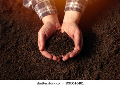 Soil fertility concept, female farmer with cupped hands full of fertile soil with ability to sustain agricultural plant growth