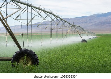 soil irrigation sprinkler agriculture california