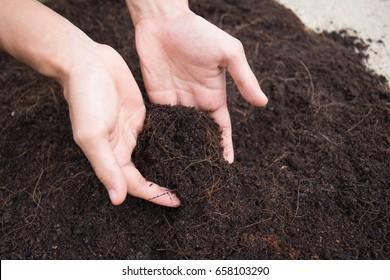 Soil mineral in farmer arms (soil, fertilizer, manure)