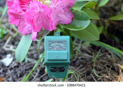 Soil moisture, light and PH meter for small private garden.Rhododendron  flowers as background