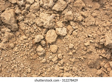 Soil is a natural clay minerals are naturally many species suitable for planting, the soil is fertile plants grow well.