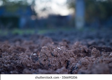 Soil is a natural clay minerals are naturally many species suitable for planting, the soil is fertile plants grow well