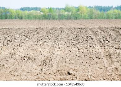 Soil. Organic gardening, agriculture. Nature closeup. Earth.