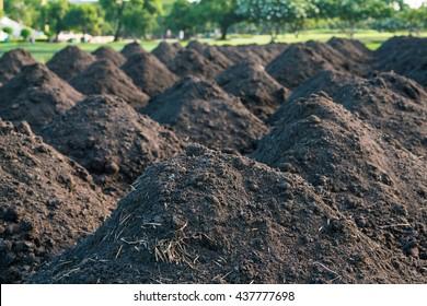 Soil Piles