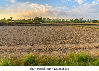 Soil preparation for crop production concept : Land preparation, plowing to till or dig-up, mix and overturn the soil, harrowing to break the soil clods into smaller mass and incorporate plant residue