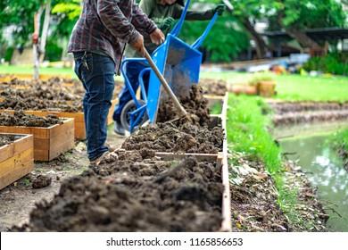 soil in rectangle flowerpot is prepared for homegrown vegetable planting in the garden.