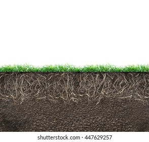soil with roots and grass isolated