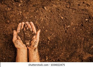 Boden in den Händen eines starken Landwirts (des Mannes) auf Feldehintergrund, der von oben aufgenommen wurde (Draufsicht, flacher Hintergrund). Landwirtschafts-, Gartenbau- oder Ökologie-Konzept-Layout mit kostenlosem Text- (Kopienraum).