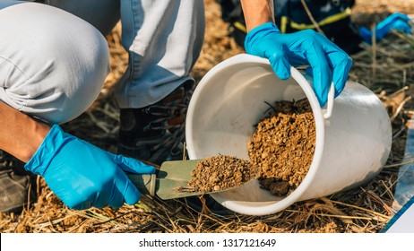 Soil Testing. Agronomy Specialist taking soil sample for fertility analysis. Hands in gloves close up.  Environmental protection, organic soil certification, field work, research