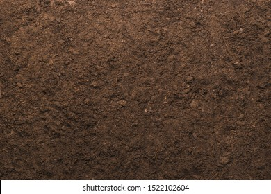 Soil texture background for gardening concept