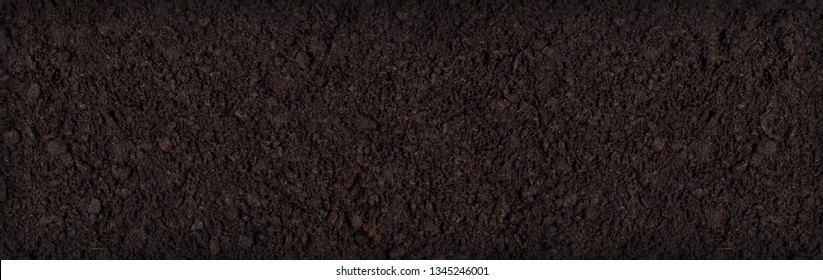 soil texture background seen from above, top view