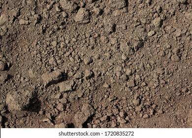 Soil texture background for your design. Fertile soil background.