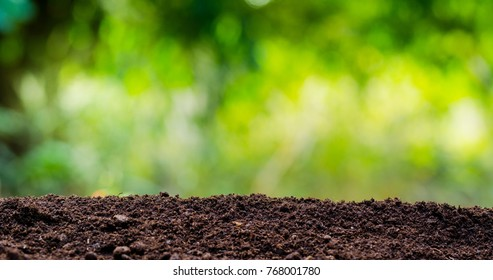 soil texture with green background for template design